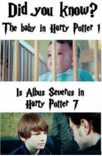 http://t.co/vB73GWhwIf: Did know?  you The baby in Harty Potter 1  ls Albus Severus in  Harty Potter 7 http://t.co/vB73GWhwIf