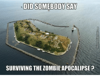 Checkmate, zombies!: DID SOMEBODY SAY  SURVIVING THE ZOMBIEAPOCALIPSE Checkmate, zombies!