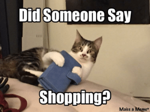 Meme, Omg, and Shopping: Did Someone Say  Shopping?  Make a Meme+ omg-images:Holiday shopping anyone?