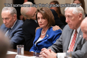 """Politics, Image, and Nancy Pelosi: """"Did someone say third grade politician?"""" This Image Is Going Viral Right Now! How Dare They Make Fun Of Biden And Nancy Pelosi!"""