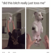 "Bitch, Memes, and 🤖: ""did this bitch really just toss me"" Lmfaooo this has me weak 😂"