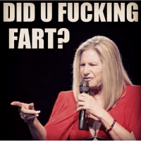 THROWBACK THURSDAY.. One of my first memes! barbrastreisand tbt meme funny funnymeme fart twerk swerve hipster gay idol icon glee broadway boss artist best bitch classy diva dragqueen famous follow goddess gorgeous humor haters inspiration beautiful: DID U FUCKING  FART THROWBACK THURSDAY.. One of my first memes! barbrastreisand tbt meme funny funnymeme fart twerk swerve hipster gay idol icon glee broadway boss artist best bitch classy diva dragqueen famous follow goddess gorgeous humor haters inspiration beautiful