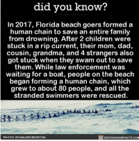 Amazon, Apple, and Children: did vou know?  In 2017, Florida beach goers formed a  human chain to save an entire family  from drowning. After 2 children were  stuck in a rip current, their mom, dad  cousin, grandma, and 4 strangers also  got stuck when they swam out to save  them. While law enforcement was  waiting for a boat, people on the beach  began forming a human chain, which  grew to about 80 people, and all the  stranded swimmers were rescued.  DIDYOUKNOWFACTS.co  PHOTO: ROSALIND BECKTON Faith in humanity restored 💞 awesome love humanity 📢 Share the knowledge! Tag your friends in the comments. ➖➖➖➖➖➖➖➖➖➖➖ Want more Did You Know(s)? ➡📓 Buy our book on Amazon: [LINK IN BIO] ➡📱 Download our App: http:-apple.co-2i9iX0u ➡📩 Get daily text message alerts: http:-Fact-Snacks.com ➡📩 Free email newsletter: http:-DidYouKnowFacts.com-Sign-Up- ➖➖➖➖➖➖➖➖➖➖➖ We post different content across our channels. Follow us so you don't miss out! 📍http:-facebook.com-didyouknowblog 📍http:-twitter.com-didyouknowfacts ➖➖➖➖➖➖➖➖➖➖➖ DYN FACTS TRIVIA TIL DIDYOUKNOW NOWIKNOW