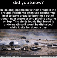 That's one way to do it 🍞 bread Iceland travel cool baking 📢 Share the knowledge! Tag your friends in the comments. ➖➖➖➖➖➖➖➖➖➖➖ Want more Did You Know(s)? ➡📓 Buy our book on Amazon: [LINK IN BIO] ➡📱 Download our App: http:-apple.co-2i9iX0u ➡📩 Get daily text message alerts: http:-Fact-Snacks.com ➡📩 Free email newsletter: http:-DidYouKnowFacts.com-Sign-Up- ➖➖➖➖➖➖➖➖➖➖➖ We post different content across our channels. Follow us so you don't miss out! 📍http:-facebook.com-didyouknowblog 📍http:-twitter.com-didyouknowfacts ➖➖➖➖➖➖➖➖➖➖➖ DYN FACTS TRIVIA TIL DIDYOUKNOW NOWIKNOW: did vou know?  In lceland, people bake their bread in the  ground. Residents often use geothermal  heat to bake bread by burying a pot of  dough near a geyser and placing a stone  on top. This alerts locals that bread is  underneath so it won't be disturbed  while it sits for about a day.  PHOTO: CC BY 2.0, FRANCESCO G  DIDYOUKNOWFACTS.COM That's one way to do it 🍞 bread Iceland travel cool baking 📢 Share the knowledge! Tag your friends in the comments. ➖➖➖➖➖➖➖➖➖➖➖ Want more Did You Know(s)? ➡📓 Buy our book on Amazon: [LINK IN BIO] ➡📱 Download our App: http:-apple.co-2i9iX0u ➡📩 Get daily text message alerts: http:-Fact-Snacks.com ➡📩 Free email newsletter: http:-DidYouKnowFacts.com-Sign-Up- ➖➖➖➖➖➖➖➖➖➖➖ We post different content across our channels. Follow us so you don't miss out! 📍http:-facebook.com-didyouknowblog 📍http:-twitter.com-didyouknowfacts ➖➖➖➖➖➖➖➖➖➖➖ DYN FACTS TRIVIA TIL DIDYOUKNOW NOWIKNOW