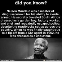 Master of disguise 🕵🏼 spy masterofdisguise interesting infuential history ➡📱Download our free App: http:-apple.co-2i9iX0u: did vou know?  Nelson Mandela was a master of  disguise known for his ability to evade  arrest. He secretly traveled South Africa  dressed as a garden boy, factory worker,  and chef and repeatedly escaped police,  despite the roadblocks set up across the  country. When he was finally caught due  to a tip-off from a CIA agent in 1962, he  was dressed as a chauffeur.  PHOTO: RSVLTS.COM  DIDYOUKNOWBLOG.COM Master of disguise 🕵🏼 spy masterofdisguise interesting infuential history ➡📱Download our free App: http:-apple.co-2i9iX0u