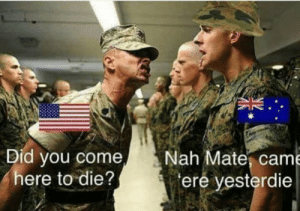 Dank, Memes, and Target: Did you come  here to die?  Nah Mate, came  ere yesterdie Oi Mate by RootRazr MORE MEMES