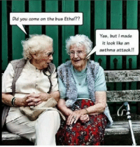 Lucy And Ethel: Did you come on the bus Ethel??  Yes, but I made  it look like an  asthma attack.!!