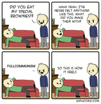 Communist Brownies: DID YOu EAT  My SPECIAL  BROWNIES!2  HAHA VEAH, T'VE  NEVER FELT ANYTHING  LIKE THIS, WHAT  DID YOu MAKE  THEM WITH? T1  FULLCOMMUNISM  SO THIS IS HOW  IT FEELS  RAPHCOmiC.COM Communist Brownies