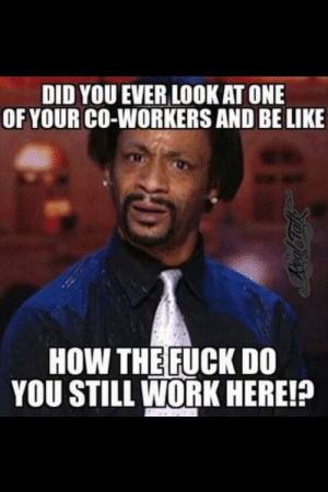 Be Like, Memes, and Work: DID YOU EVER LOOK AT ONE  OF YOUR CO-WORKERS AND BE LIKE  HOW THE FUCK DO  YOU STILL WORK HERE!? SUPER TOP 6! Very Hilarious Coworker Memes | Healthyeatinginsight.com