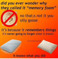 "Never, Wonder, and Memory: did you ever wonder why  they called it ""memory foam""  no that;s not it you  silly goose  it's because it remembers things  it's never going to forget what it knows  i have forbidden knoweledge  @aquascissorş  it knows what you did"