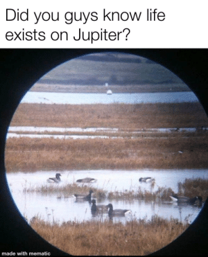 Exists: Did you guys know life  exists on Jupiter?  made with mematic