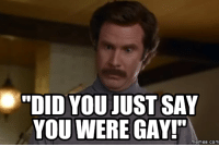 "Gay Meme: DID YOU JUST SAY  YOU WERE GAY!""  memes. COM"