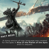 Memes, Movies, and Camera: DID YOU KN  OVIES  FACT #320  A slang version of sign language was created  for the apes in Rise of the Planet of the Apes  and it's sequels. Bonus fact: Planet of the Apes is one of the longest franchises of all time (started in 1968), but there are more movies in the Marvel Cinematic Universe, that started in 2008! • • • Double Tap and Tag someone who needs to know this 👇 All credit to the respective film and producers. movie movies film tv camera cinema fact didyouknow moviefacts cinematography screenplay director actor actress act acting movienight cinemas watchingmovies hollywood bollywood didyouknowmovies