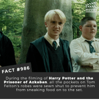 😆Would you watch a Harry Potter television remake?🎬🎥 • • • • Double Tap and Tag someone who needs to know this 👇 All credit to the respective film and producers. Movie Movies Film TV Cinema MovieNight Hollywood harrypotter dracomalfoy hogwarts tomfelton ronweasley hermionegranger dumbledore: DID YOU KNO  MOVIE  FACT #986  During the filming of Harry Potter and the  Prisoner of Azkaban, all the pockets on Tom  Felton's robes were sewn shut to prevent him  from sneaking food on to the set. 😆Would you watch a Harry Potter television remake?🎬🎥 • • • • Double Tap and Tag someone who needs to know this 👇 All credit to the respective film and producers. Movie Movies Film TV Cinema MovieNight Hollywood harrypotter dracomalfoy hogwarts tomfelton ronweasley hermionegranger dumbledore