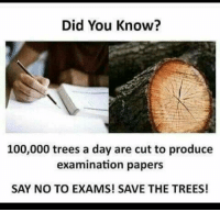 Anaconda, Trees, and Day: Did You Know?  100,000 trees a day are cut to produce  examination papers  SAY NO TO EXAMS! SAVE THE TREES!