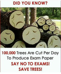 Anaconda, Internet, and Trees: DID YOU KNOW?  100,000 Trees Are Cut Per Day  To Produce Exam Paper  SAY NO TO EXAMS!  SAVE TREES!