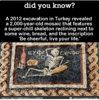 Amazon, Apple, and Chill: did you know?  A 2012 excavation in Turkey revealed  a 2,000-year-old mosaic that features  a super-chill skeleton reclining next to  some wine, bread, and the inscription  'Be cheerful, live your life.  DIDYOUKNow BLOG coM  PHOTO HALIT DEMIRIANDALOUAGENCY I strive to be as chill as this skeleton. 💀 awesome wordstoliveby chill 📢 Share the knowledge! Tag your friends in the comments. ➖➖➖➖➖➖➖➖➖➖➖ Want more Did You Know(s)? ➡📓 Buy our book on Amazon: [LINK IN BIO] ➡📱 Download our App: http:-apple.co-2i9iX0u ➡📩 Get daily text message alerts: http:-Fact-Snacks.com ➡📩 Free email newsletter: http:-DidYouKnowFacts.com-Sign-Up- ➖➖➖➖➖➖➖➖➖➖➖ We post different content across our channels. Follow us so you don't miss out! 📍http:-facebook.com-didyouknowblog 📍http:-twitter.com-didyouknowfacts ➖➖➖➖➖➖➖➖➖➖➖ DYN FACTS TRIVIA TIL DIDYOUKNOW NOWIKNOW