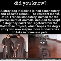 """That outfit 😍😩 socute dogs dogsofinsta animals ➡📱Download our free App: [LINK IN BIO]: did you know?  A stray dog in Bolivia joined a monastery  and became a monk. The resident monks  of St. Francis Monastery, named for the  patron saint of animals, decided to adopt  a dog they call """"Friar Bigoton' from the  Cold Nose Project, which hopes the dog's  story will now inspire more monasteries  to take in homeless pets.  DIDYOUKNOWFACTS.coM  PHOTO: KASPER MARIUSZKAPRONOFM That outfit 😍😩 socute dogs dogsofinsta animals ➡📱Download our free App: [LINK IN BIO]"""