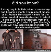 "<p><a href=""http://didyouknowblog.com/post/158214202418/a-stray-dog-in-bolivia-joined-a-monastery-and"" class=""tumblr_blog"">did-you-kno</a>:</p>  <blockquote><p>A stray dog in Bolivia joined a monastery and became a monk. The resident monks of St. Francis Monastery, named for the patron saint of animals, decided to adopt a dog they call 'Friar Bigotón' from the Cold Nose Project, which hopes the dog's story will now inspire more monasteries to take in homeless pets. <span><a href=""https://www.thedodo.com/monastery-adopts-friar-dog-2303203254.html"">Source</a></span> <span><a href=""https://www.facebook.com/kasper.kapronofm/media_set?set=a.1478968562127882.1073742169.100000442572550&amp;type=3"">Source 2</a></span> <span><a href=""http://www.humanesociety.org/about/departments/faith/francis_files/st_francis_of_assisi.html"">Source 3</a></span></p><figure class=""tmblr-full"" data-orig-height=""506"" data-orig-width=""482""><img src=""https://78.media.tumblr.com/808be0a6c45756f28c2b9178b8582561/tumblr_inline_omk5gaQPKC1sjh1ps_540.jpg"" data-orig-height=""506"" data-orig-width=""482""/></figure><figure data-orig-width=""582"" data-orig-height=""683"" class=""tmblr-full""><img src=""https://78.media.tumblr.com/3f3b79c338cf6032143eea214f94d01c/tumblr_inline_omj6snITtN1qdd173_540.png"" alt=""image"" data-orig-width=""582"" data-orig-height=""683""/></figure><figure data-orig-width=""563"" data-orig-height=""691"" class=""tmblr-full""><img src=""https://78.media.tumblr.com/6d18b9a1a91e5f3a5a22aeab5f1596d8/tumblr_inline_omj6so6iWg1qdd173_540.png"" alt=""image"" data-orig-width=""563"" data-orig-height=""691""/></figure><figure class=""tmblr-full"" data-orig-height=""683"" data-orig-width=""644""><img src=""https://78.media.tumblr.com/d887e47d3d449e53ab6561500062443d/tumblr_inline_omk5gbMltT1sjh1ps_540.png"" data-orig-height=""683"" data-orig-width=""644""/></figure><figure data-orig-width=""643"" data-orig-height=""773"" class=""tmblr-full""><img src=""https://78.media.tumblr.com/526542743f9d17ecaf4acfd1c6f2192b/tumblr_inline_omj6sq5Txg1qdd173_540.png"" alt=""image"" data-orig-width=""643"" data-orig-height=""773""/></figure><figure class=""tmblr-full"" data-orig-height=""763"" data-orig-width=""640""><img src=""https://78.media.tumblr.com/5f9004caf6d1ff970dc923ddab06f4a3/tumblr_inline_omk5gaDBfo1sjh1ps_540.jpg"" data-orig-height=""763"" data-orig-width=""640""/></figure></blockquote>: did you know?  A stray dog in Bolivia joined a monastery  and became a monk. The resident monks  of St. Francis Monastery, named for the  patron saint of animals, decided to adopt  a dog they call 'Friar Bigotón' from the  Cold Nose Project, which hopes the dog's  story will now inspire more monasteries  to take in homeless pets.  DIDYOUKNOWFACTS.coM  PHOTO: KASPER MARIUSZ KAPRON OFM <p><a href=""http://didyouknowblog.com/post/158214202418/a-stray-dog-in-bolivia-joined-a-monastery-and"" class=""tumblr_blog"">did-you-kno</a>:</p>  <blockquote><p>A stray dog in Bolivia joined a monastery and became a monk. The resident monks of St. Francis Monastery, named for the patron saint of animals, decided to adopt a dog they call 'Friar Bigotón' from the Cold Nose Project, which hopes the dog's story will now inspire more monasteries to take in homeless pets. <span><a href=""https://www.thedodo.com/monastery-adopts-friar-dog-2303203254.html"">Source</a></span> <span><a href=""https://www.facebook.com/kasper.kapronofm/media_set?set=a.1478968562127882.1073742169.100000442572550&amp;type=3"">Source 2</a></span> <span><a href=""http://www.humanesociety.org/about/departments/faith/francis_files/st_francis_of_assisi.html"">Source 3</a></span></p><figure class=""tmblr-full"" data-orig-height=""506"" data-orig-width=""482""><img src=""https://78.media.tumblr.com/808be0a6c45756f28c2b9178b8582561/tumblr_inline_omk5gaQPKC1sjh1ps_540.jpg"" data-orig-height=""506"" data-orig-width=""482""/></figure><figure data-orig-width=""582"" data-orig-height=""683"" class=""tmblr-full""><img src=""https://78.media.tumblr.com/3f3b79c338cf6032143eea214f94d01c/tumblr_inline_omj6snITtN1qdd173_540.png"" alt=""image"" data-orig-width=""582"" data-orig-height=""683""/></figure><figure data-orig-width=""563"" data-orig-height=""691"" class=""tmblr-full""><img src=""https://78.media.tumblr.com/6d18b9a1a91e5f3a5a22aeab5f1596d8/tumblr_inline_omj6so6iWg1qdd173_540.png"" alt=""image"" data-orig-width=""563"" data-orig-height=""691""/></figure><figure class=""tmblr-full"" data-orig-height=""683"" data-orig-width=""644""><img src=""https://78.media.tumblr.com/d887e47d3d449e53ab6561500062443d/tumblr_inline_omk5gbMltT1sjh1ps_540.png"" data-orig-height=""683"" data-orig-width=""644""/></figure><figure data-orig-width=""643"" data-orig-height=""773"" class=""tmblr-full""><img src=""https://78.media.tumblr.com/526542743f9d17ecaf4acfd1c6f2192b/tumblr_inline_omj6sq5Txg1qdd173_540.png"" alt=""image"" data-orig-width=""643"" data-orig-height=""773""/></figure><figure class=""tmblr-full"" data-orig-height=""763"" data-orig-width=""640""><img src=""https://78.media.tumblr.com/5f9004caf6d1ff970dc923ddab06f4a3/tumblr_inline_omk5gaDBfo1sjh1ps_540.jpg"" data-orig-height=""763"" data-orig-width=""640""/></figure></blockquote>"