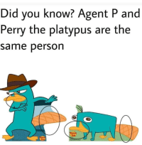 perry the platypus: Did you know? Agent P and  Perry the platypus are the  same person