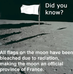 France, Moon, and Been: Did you  know?  All flags on the moon have been  bleached due to radiation,  making the moon an official  province of France. Lunatic