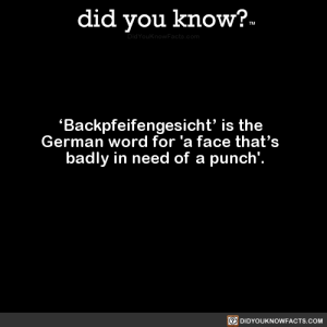 did-you-kno:  'Backpfeifengesicht' is the   German word for 'a face that's   badly in need of a punch'.  Source Source 2: did you know?  Backpfeifengesicht' is the  German word for 'a face that's  badly in need of a punch'.  回DIDYOUKNOWFACTS.COM did-you-kno:  'Backpfeifengesicht' is the   German word for 'a face that's   badly in need of a punch'.  Source Source 2
