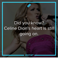 Memes, Celine Dion, and 🤖: Did you know?  Celine Dion's heart is still  going on  8SHIT.NET