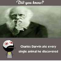 "Twitter: BLB247 Snapchat : BELIKEBRO.COM belikebro sarcasm meme Follow @be.like.bro: ""Did you know?  Charles Darwin ate every  single animal he discovered Twitter: BLB247 Snapchat : BELIKEBRO.COM belikebro sarcasm meme Follow @be.like.bro"