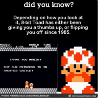 Flipping you off since 1985 awesome funny loveit thebird ➡📱Download our free App: [LINK IN BIO]: did you know?  Depending on how you look at  it, 8-bit Toad has either been  giving you a thumbs up, or flipping  you off since 1985.  WORLD  TI  MARIO  065400  THANK YOU MARIO  BUT OUR PRINCESS IS IN  ANOTHER CASTLE t  DIDYOUKNOWBLOG.coM  PHOTO: NINTENDOAGE COMMCONSOLEHEAD84 Flipping you off since 1985 awesome funny loveit thebird ➡📱Download our free App: [LINK IN BIO]