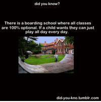Anaconda, England, and Gif: did you know?  did-you-kno.tumblr.co  There is a boarding school where all classes  are 100% optional. If a child wants they can just  play all day every day  eULE  ID  did-you-kno.tumblr.com allthe-lights-inthe-sky:  viridian-genesis:  bluhbluhhugedork:  wristsareforbracelets:  fight-the-world:  diagondaley:    SUMMERHILL SCHOOL!!! ENGLAND!!!!  My teacher told me about this in high school. As humans we have a natural thirst for knowledge. While naturally kids did their own thing for the first few weeks they eventually started going to class. It teaches them to want to go to class. You're not forced to learn and because of that you want to learn.  THAT'S BRILLIANT  It sounds stupid but it's almost like reverse psychology. Kids hate people forcing them to go to school. But as soon as that is lifted, they suddenly want to. And it's not surprising.  People like learning, people hate being forced to learn
