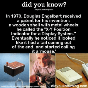 "Mouse, Metal, and Shell: did you know?  didyouknowblog.com  In 1970, Douglas Engelbart received  a patent for his invention:  a wooden shell with metal wheels  he called the ""X-Y Position  Indicator for a Display System  Eventually he noticed it looked  like it had a tail coming out  of the end, and started calling  it a 'mouse.  Photo Credit truotedrevi  didyouknowblog.com  ependent Another You Learn Something New Every Day Dump"