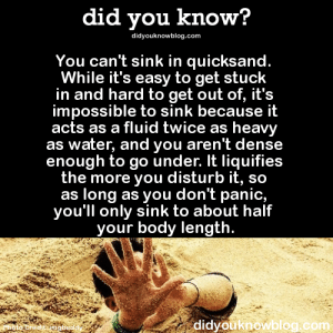 80s, Gif, and Growing Up: did you know?  didyouknowblog.com  You can't sink in quicksand.  While it's easy to get stuck  in and hard to get out of, it's  impossible to sink because it  acts as a fluid twice as heavy  as water, and you aren't dense  enough to go under. It liquifies  the more you disturb it, sco  as long as you don't panic,  you'll only sink to about half  your body length  Photo Credit: imgbuddy  didyouknowblog.com therapybegins:  shadowkat678:  iretrotech:   imperialfistsspacemarine:   mojave-red:   absorbednebula:  mojave-red:   kompanie-mutter:  keyhollow:  perkachow:   keyhollow:  kokolokos:  haywood-you-stop-that:   ladyfabulous:   did-you-kno:   Let's review. YEP. NOPE. Yuh huh. Nuh uh. Source    Growing up in the 80s and early 90s really made quicksand a thing to be feared.    Your only real danger from quicksand is getting stuck in a tidal area and drowning when the tide comes in   the fear is back   There's also that dry quicksand shit  What makes dry quicksand different?   It dry  idk why you used that Princess Bride gif when that's clearly lightning sand  These people don't know the difference between Lightning Sand, Pea Sand, Pebble Sand, Drum Sand, Glass Sand, Moist Sand, Shadow Sand, Rice Sand, Fine Sand, Dusty Sand, Chipped Sand, Grit Sand, Crystal Sand, Glow Sand and Scrape Sand.     I'm not even going to try to pretend I know more than half of those  Lightning Sand is actually sand that's been struck by lightning and makes glass. Pea sand is sand that is not quite the size of peas but close. Happens mostly where sandstone cliffs get a lot of upward and sideways winds over thousands of years, breaks nodules off and rolls them into spheres. Pebble sand is irregular shaped grains about the size of pea sand. Drum sand is sand that actually vibrates when you either walk on it or the wind blows on it. The sand dune voice noises you hear are drum sand. Glass sand is sand made from glass fragments. Moist sand is sand that has water under it so you dig down and hit moist sand, it clumps. Shadow sand is sand that is black, usually made from lava flows that have been ground down to pumice. Rice sand is sand that has grains the size of rice grains. Fine sand is the sand you use for hourglasses and the like. Dusty sand is mostly dust with some fine grains, more or less powder. Chipped sand is sand that has chips of rock and other debris in it like sticks and bone. Grit sand is sand that is gritty enough to rub against itself and hear crunching. Crystal sand is sand that is made from quartz or other mineral crystals. Glow sand is yellow uranium sand, was used in Vaseline glass to make it yellow green. Called Vaseline glass because it has a look like it's Vaseline. That's the stuff I inhaled. Scrape Sand is sand is any sand being blown around fast enough to scrape paint or skin off something.  I live where there's a lot of sand.    Reblog for all the various types of sand.   You forgot the most deadly sand of all   Gotta reblog again for that.