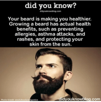 did you know: did you know?  didyouknowy blog.com  Your beard is making you healthier.  Growing a beard has actual health  benefits, such as preventing  allergies, asthma attacks, and  rashes, and protecting your  skin from the sun.  dvouknowblog.com  Photo Credit: we atchoutermagazine