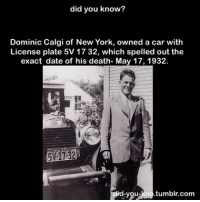 Follow my friends @zef.edit he makes awesome cartoons of people!!! 😍: did you know?  Dominic Calgi of New York, owned a car with  License plate 5V 17 32, which spelled out the  exact date of his death- May 17, 1932.  id you tumblr com Follow my friends @zef.edit he makes awesome cartoons of people!!! 😍