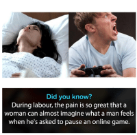 "Memes, Game, and Http: Did you know?  During labour, the pain is so great thata  woman can almost imagine what a man feels  when he's asked to pause an online game. <p>its almost the same via /r/memes <a href=""http://ift.tt/2rW8Oxe"">http://ift.tt/2rW8Oxe</a></p>"