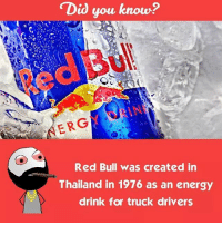 Memes, 🤖, and Driver: Did you know?  ERG  Red Bull was created in  Thailand in 1976 as an energy  drink for truck drivers Twitter: BLB247 Snapchat : BELIKEBRO.COM belikebro sarcasm Follow @be.like.bro