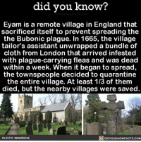 Amazon, Apple, and England: did you know?  Eyam is a remote village in England that  sacrificed itself to prevent spreading the  the Bubonic plague. In 1665, the village  tailor's assistant unwrapped a bundle of  cloth from London that arrived infested  with plague-carrying fleas and was dead  within a week. When it began to spread,  the townspeople decided to quarantine  the entire village. At least 1/3 of them  died, but the nearby villages were saved.  PHOTO: WIKIPEDIA  DIDYOUKNOWFACTS.COM Well that was nice of them 😷🤧 plague history village England 📢 Share the knowledge! Tag your friends in the comments. ➖➖➖➖➖➖➖➖➖➖➖ Want more Did You Know(s)? ➡📓 Buy our book on Amazon: [LINK IN BIO] ➡📱 Download our App: http:-apple.co-2i9iX0u ➡📩 Get daily text message alerts: http:-Fact-Snacks.com ➡📩 Free email newsletter: http:-DidYouKnowFacts.com-Sign-Up- ➖➖➖➖➖➖➖➖➖➖➖ We post different content across our channels. Follow us so you don't miss out! 📍http:-facebook.com-didyouknowblog 📍http:-twitter.com-didyouknowfacts ➖➖➖➖➖➖➖➖➖➖➖ DYN FACTS TRIVIA TIL DIDYOUKNOW NOWIKNOW