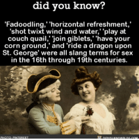 "Amazon, Funny, and Memes: did you know?  ""Fadoodling,' 'horizontal refreshment  'shot twixt wind and water, ''play at  couch quail,' join giblets,' 'have your  corn ground,"" and 'ride a dragon upon  St. George' were all slang terms for sex  in the 16th through 19th centuries.  PHOTO: PINTER EST Let's bring these back 😂💯 funny history ➡️📓 Buy our book on Amazon: [LINK IN BIO]"