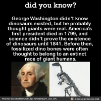 giant humans