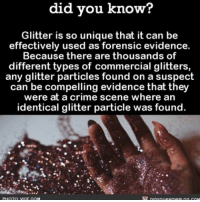 Careful with the glitter! ✨ glitter evidence funny weird ➡📱Download our free App: http:-apple.co-2i9iX0u: did you know?  Glitter is so unique that it can be  effectively used as forensic evidence.  Because there are thousands of  different types of commercial glitters  any glitter particles found on a suspect  can be compelling evidence that they  were at a crime scene where an  identical glitter particle was found Careful with the glitter! ✨ glitter evidence funny weird ➡📱Download our free App: http:-apple.co-2i9iX0u