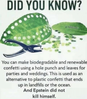 Wow good to know! via /r/memes https://ift.tt/346Yi5c: DID YOU KNOW?  Holistie Al  You can make biodegradable and renewable  confetti using a hole punch and leaves for  parties and weddings. This is used as an  alternative to plastic confetti that ends  up in landfills or the ocean.  And Epstein did not  kill himself. Wow good to know! via /r/memes https://ift.tt/346Yi5c