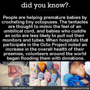 did-you-know:  People are helping premature babies by crocheting tiny octopuses. The tentacles are thought to mimic the feel of an umbilical cord, and babies who cuddle an octo are less likely to pull out their monitors and tubes. When hospitals that participate in the Octo Project noted an increase in the overall health of their preemies, volunteers around the world began flooding them with donations. (Source, Source 2, Source 3): did you know?.  idYouknowFacts.cor  People are helping premature babies by  crocheting tiny octopuses. The tentacles  are thought to mimic the feel of an  umbilical cord, and babies who cuddle  an octo are less likely to pull out their  monitors and tubes. When hospitals that  participate in the Octo Project noted an  increase in the overall health of their  preemies, volunteers around the world  began flooding them with donations.  O DIDYOUKNOWFACTS.COM  PHOTO: INSTAGRAM/SIMPLEMOST did-you-know:  People are helping premature babies by crocheting tiny octopuses. The tentacles are thought to mimic the feel of an umbilical cord, and babies who cuddle an octo are less likely to pull out their monitors and tubes. When hospitals that participate in the Octo Project noted an increase in the overall health of their preemies, volunteers around the world began flooding them with donations. (Source, Source 2, Source 3)