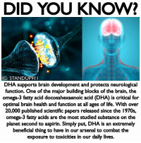 Arsenal, Beautiful, and Life: DID YOU KNOW?  IG: STANDUP9 II  DHA supports brain development and protects neurological  function. One of the major building blocks of the brain, the  omega-3 fatty acid docosahexaenoic acid (DHA) is critical for  optimal brain health and function at all ages of life. With over  20,000 published scientific papers released since the 1970s,  omega-3 fatty acids are the most studied substance on the  planet second to aspirin. Simply put, DHA is an extremely  beneficial thing to have in our arsenal to combat the  exposure to toxicities in our daily lives. I have new product available on my website! Use my username Standup911 to receive 15% off your order. - Did you know, The human brain is largely made of fat — 60% by dry weight. One particular group of fats, the omega-3 essential fatty acids, is the most important for the brain's structural integrity and performance. And one omega-3 fatty acid, DHA, is the single most crucial nutrient you can take for brain health throughout all stages of life. DHA is a foundational nutrient needed for a healthy, optimally functioning brain. Trying to build a healthy brain without it is like building a house on a foundation of sand. Of all the essential fatty acids, the omega-3s are the most abundant in the brain. They are the preferred building blocks of brain cell membranes and nerve cells. When omega-3s aren't available, your brain will use whatever fats are available, but this leads to suboptimal brain cells. - @cymbiotika standup911 bethechange cymbiotika brain health dha antioxidants astaxanthin wanderlust beautiful motivation inspiration