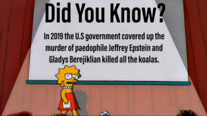Make this the next epstein didnt kill himself meme ok? Please repost and spread it.: Did You Know?  In 2019 the U.S government covered up the  murder of paedophile Jeffrey Epstein and  Gladys Berejiklian killed all the koalas. Make this the next epstein didnt kill himself meme ok? Please repost and spread it.