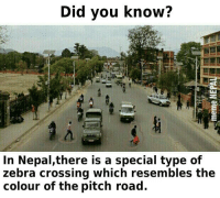 zebra crossing: Did you know?  In Nepal,there is a special type of  zebra crossing which resembles the  colour of the pitch road.