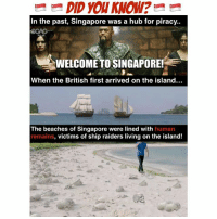 Memes, Piracy, and Link: DID you KNOW?  In the past, Singapore was a hub for piracy..  WELCOMETO SINGAPORE!  When the British first arrived on the island...  The beaches of Singapore were lined with human  remains, victims of ship raiders living on the island! Never knew this! Now I know thanks to <link in bio> 😱😱 No wonder people always see ghosts on beaches… sp