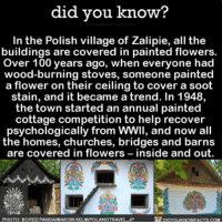 So pretty 🌸🌺🌼 love flowers cute village home ➡📱Download our free App: [LINK IN BIO]: did you know?  In the Polish village of Zalipie, all the  buildings are covered in painted flowers.  Over 100 years ago, when everyone had  wood-burning stoves, someone painted  a flower on their ceiling to cover  a soot  stain, and it became a trend. In 1948,  the town started an annual painted  cottage competition to help recover  psychologically from wwil, and now all  the homes, churches, bridges and barns  are covered in flowers  inside and out  DIDYouKNowFACTs.coM  PHOTO: BORED PANDANMARCINKELMIPOLANDTRAVEL JP So pretty 🌸🌺🌼 love flowers cute village home ➡📱Download our free App: [LINK IN BIO]