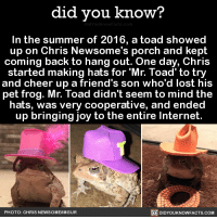 Dank, 🤖, and Joy: did you know?  In the summer of 2016, a toad showed  up on Chris Newsome's porch and kept  coming back to hang out. One day, Chris  started making hats for Mr. Toad to try  and cheer up a friend's son who'd lost his  pet frog. Mr. Toad didn't seem to mind the  hats, was very cooperative, and ended  up bringing joy to the entire Internet.  PHOTO: CHRIS NEWSOME/IMGUR  DIDYOUKNOWFACTS.COM Mr. Toad gives me life 🐸  Want more Did You Knows)? ➡  Buy our book on Amazon: http://amzn.to/2eNRlj1 ➡ Get text message alerts: http://fact-snacks.com ➡ Download our free iPhone App: https://itunes.apple.com/us/app/did-you-know-blog/id1136268619 ➡ 📩  Free email newsletter: http://goo.gl/iRFFE7