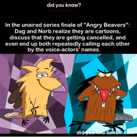 """Funny, The Voice, and Cartoon: did you know?  In the unaired series finale of """"Angry Beavers  Dag and Norb realize they are cartoons,  discuss that they are getting cancelled, and  even end up both repeatedly calling each other  by the voice-actors' names  di"""