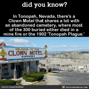 did-you-kno:  Source : did you know?  In Tonopah, Nevada, there's a  Clown Motel that shares a lot with  an abandoned cemetery, where most  of the 300 buried either died in a  mine fire or the 1902 Tonopah Plague.'  WELCOME TO THE  CLOWN OTEL  OFFICE  PHOTO: ROADTRIPPERS  DIDYOUKNOWBLOG.COM did-you-kno:  Source